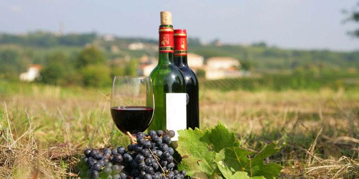 ไวน์ฝรั่งเศส แนะนำ ในรูปแบบตามเขตที่ผลิต
